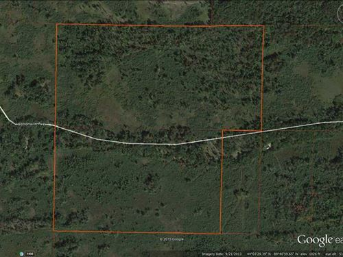 145 Acres Hunting Land in Adams CO : Friendship : Adams County : Wisconsin
