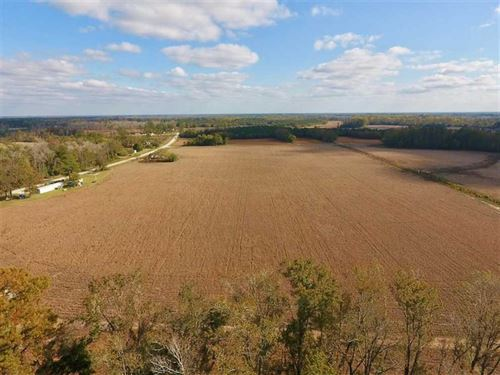 58 Acres of Farm Land For Sale : Dover : Craven County : North Carolina