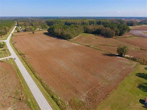 22.18 Acres of Farm And Timber Lan : Dover : Craven County : North Carolina