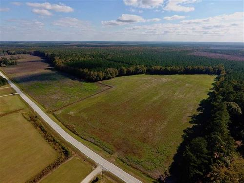 23.52 Acres of Farm Land For Sale : Dover : Craven County : North Carolina