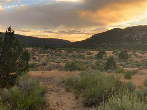 Vacant Land Colorado That Borders : Mesa : Colorado
