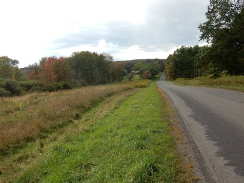 Potential Building Site Willet New : Willet : Cortland County : New York