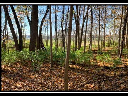Hayden Run Woods : Hilliard : Franklin County : Ohio