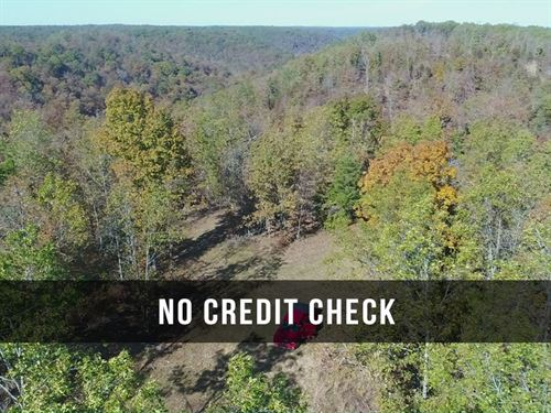 $500 Down on Hunting Land in MO : Ava : Shannon County : Missouri