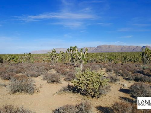 5Ac Bordering Blm Near Grand Canyon : Meadview : Mohave County : Arizona