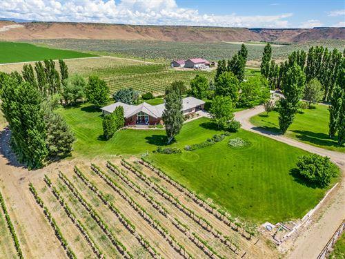 Award Winning Turn-Key Winery : Hammett : Elmore County : Idaho
