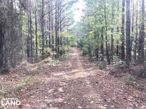Parker Road Hunting & Timber Invest : Fayette : Tuscaloosa County : Alabama