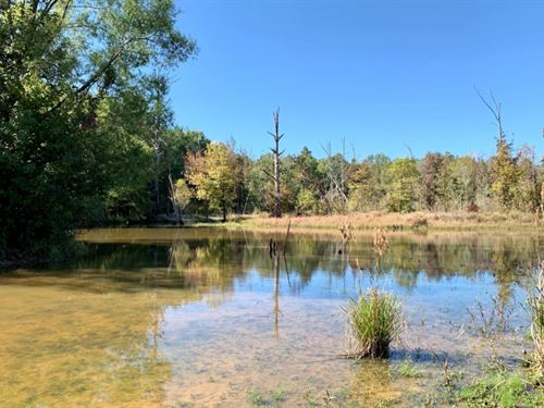 82 Acres In Oktibbeha County In Sta : Starkville : Oktibbeha County : Mississippi