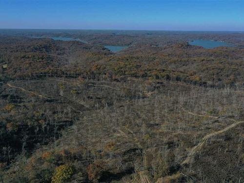 Very Reasonable 132 Acres Close to : Gravois Mills : Morgan County : Missouri