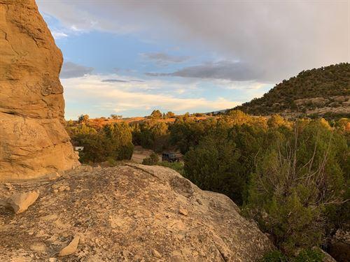 Vacant Land, Bordersd Blm Colorado : Mesa : Colorado