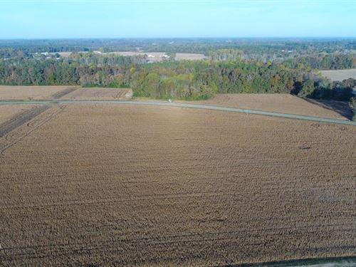 Rhodes Road Farm : Kenly : Johnston County : North Carolina