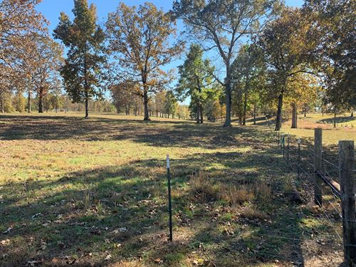Beautiful Rolling 19.5 Acres : Iron City : Wayne County : Tennessee
