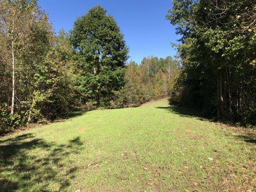 Land Near Auburn And Lake Martin : Waverly : Lee County : Alabama