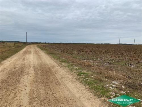 60 Ac, Irrigated Farm Land : Fort Necessity : Franklin Parish : Louisiana