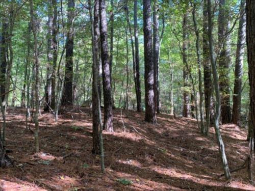 6 Acres In Jefferson County In Faye : Fayette : Jefferson County : Mississippi