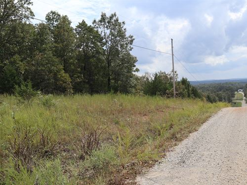 Vacant Land For Sale in Baxter CO : Gamaliel : Baxter County : Arkansas