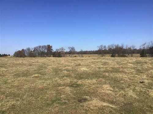 178 Acre Premier Mix Cattle / Re : Versailles : Morgan County : Missouri