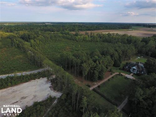 Shirley Plantation 14 Acre Homesite : Snow Hill : Greene County : North Carolina