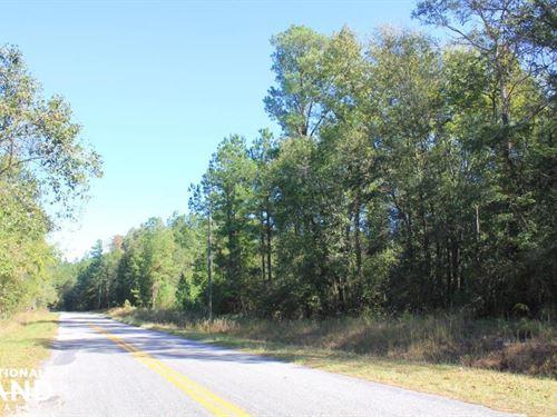 Black Creek Homesite : Summerville : Berkeley County : South Carolina