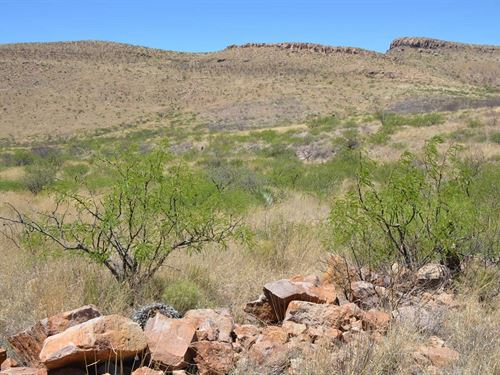 Wild West, Amazing Land, $332/Mo : Douglas : Cochise County : Arizona