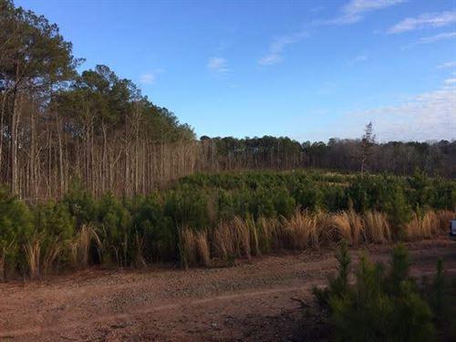 67 ac Coley Creek Road : Alexander City : Tallapoosa County : Alabama