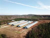 Buckeye Farm : Lineville : Clay County : Alabama