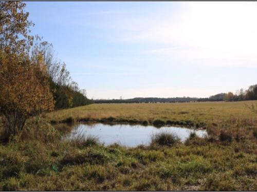 320 Acres With A Home In Oktibbeha : Starkville : Oktibbeha County : Mississippi