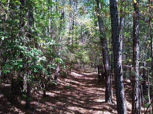 36 Acres, Laurens County, SC : Cross Hill : Laurens County : South Carolina