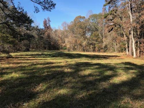 Beautiful 100+/- Ac Hunting Tract : Dadeville : Tallapoosa County : Alabama