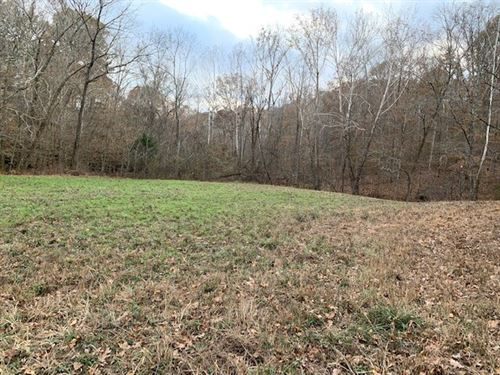 Land For Sale in Primm Springs, TN : Franklin : Williamson County : Tennessee