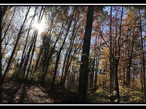 The Caves at Zaleski Tract 4 : McArthur : Vinton County : Ohio