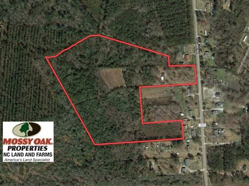 27 Acres of Hunting And Timber Lan : Kinston : Lenoir County : North Carolina