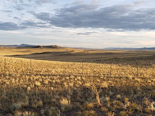 Mountain Views With Wildlife Nearby : Hartsel : Park County : Colorado