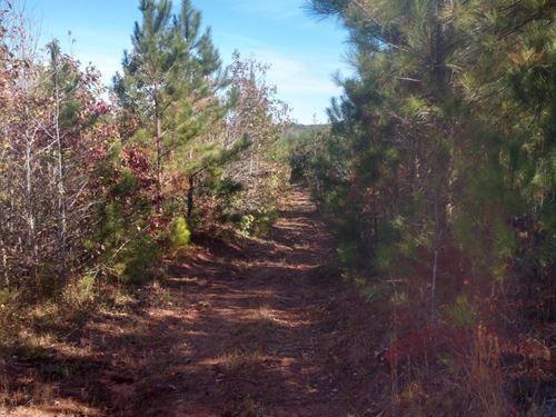 Gilliam Road : Sanford : Lee County : North Carolina