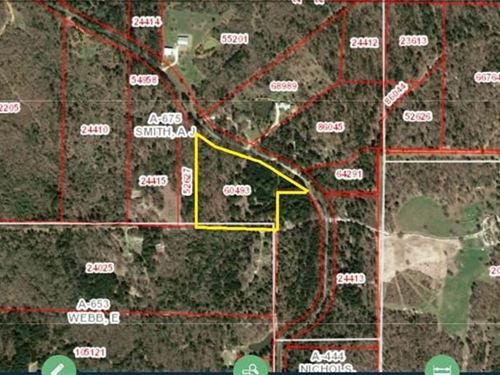 Almost 8 Wooded Acres Wood County : Winnsboro : Wood County : Texas