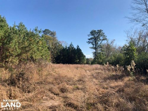 Fayetteville's Black Bear Home/Hunt : Fayetteville : Cumberland County : North Carolina