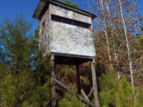 Deer/Turkey Hunting Land, Cabin : Batesville : Panola County : Mississippi