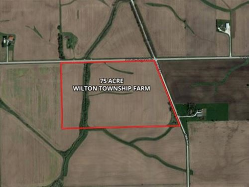 75 Acre Wilton Township Farm : Peotone : Will County : Illinois