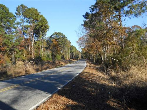 Excellent Home Site With Timber : Gloster : Amite County : Mississippi