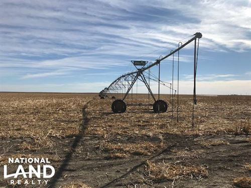 Sherman County Irrigated Ground : Kanorado : Sherman County : Kansas