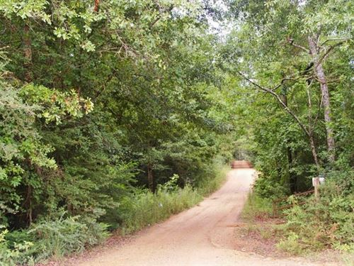 24.48 Acres Hunting Land For Sale : McComb : Pike County : Mississippi