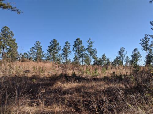 15.41 Acres, Fairfield County, SC : Winnsboro : Fairfield County : South Carolina