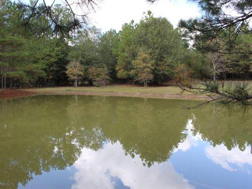 McAuliffe Ranch : Anderson : Grimes County : Texas