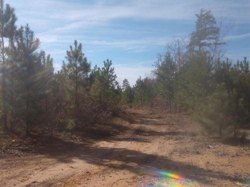 O South Plank Road : Sanford : Lee County : North Carolina