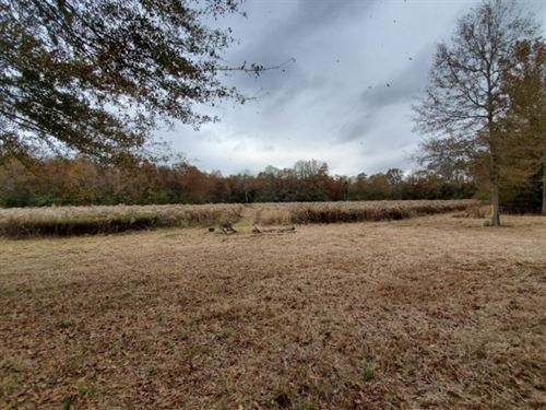 22.5 Acres In Pike County At 1121 : McComb : Pike County : Mississippi