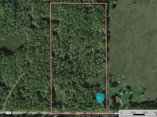 Wooded Hunting Acreage, Northern : Bruno : Pine County : Minnesota