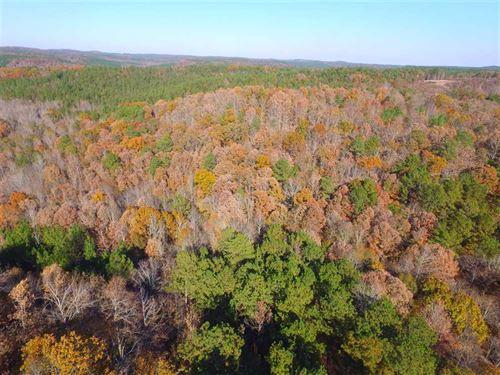 Lamar County Line Farm : Guin : Lamar County : Alabama