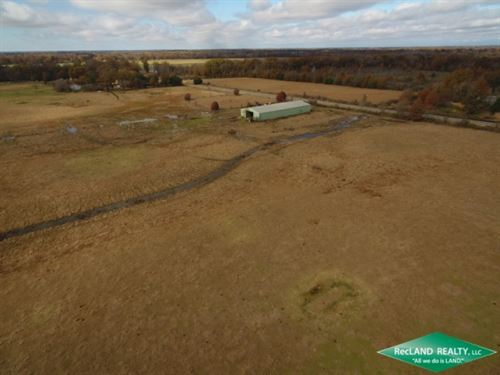 106 Ac, Working Cattle Farm, Can : Pioneer : West Carroll Parish : Louisiana