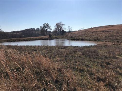 Ozark Property, Farm Land : Mount Pleasant : Izard County : Arkansas