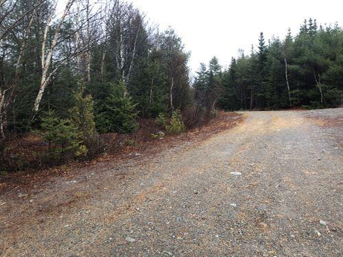 Recreational Land Whiting, Maine : Whiting : Washington County : Maine